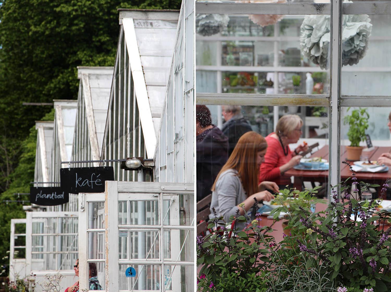 bonissim-europa_ets-el-que-menges_Stockholm-Rosendals Tradgard__014